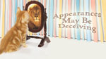 Appearances May be Deceiving - 10.19.14